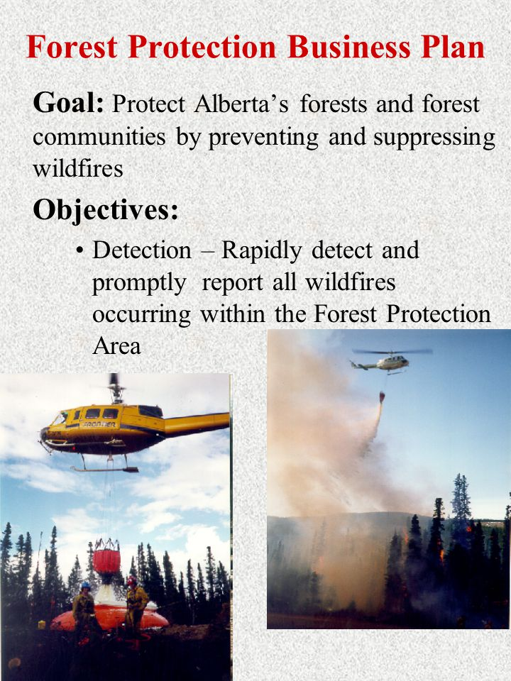 Forest Protection Business Plan Goal: Protect Alberta's forests and forest communities by preventing and suppressing wildfires Objectives: Detection – Rapidly detect and promptly report all wildfires occurring within the Forest Protection Area