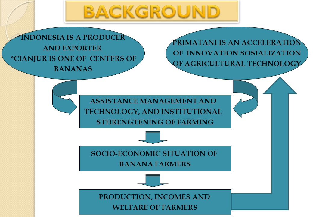 OUTLINE BACKGROUND GOALS AND OBJECTIVES RESEARCH METHOD STATE OF RESEARCH AREAS RESULTS OF RESEARCH CONCLUSIONS AND RECOMMENDATIONS