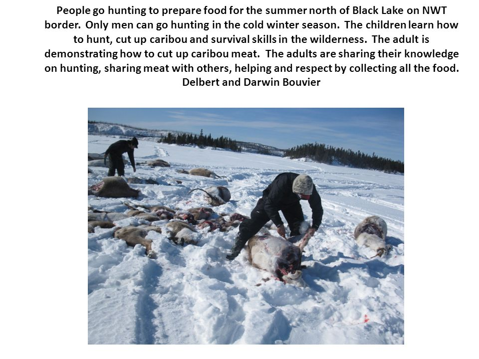 People go hunting to prepare food for the summer north of Black Lake on NWT border. Only men can go hunting in the cold winter season. The children le