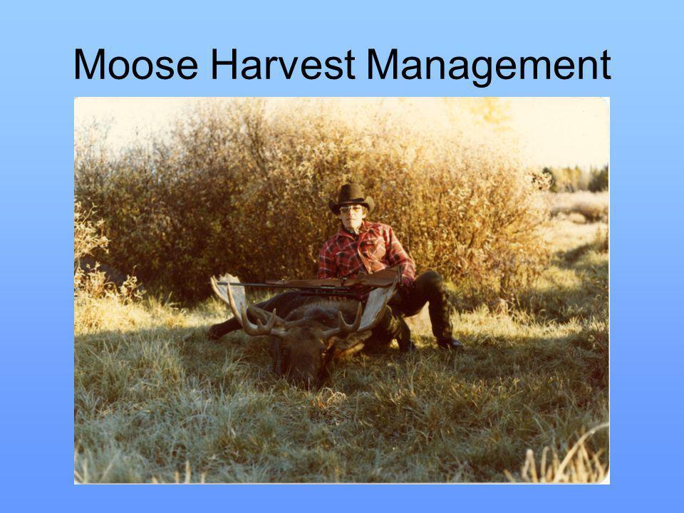 Moose Harvest Management