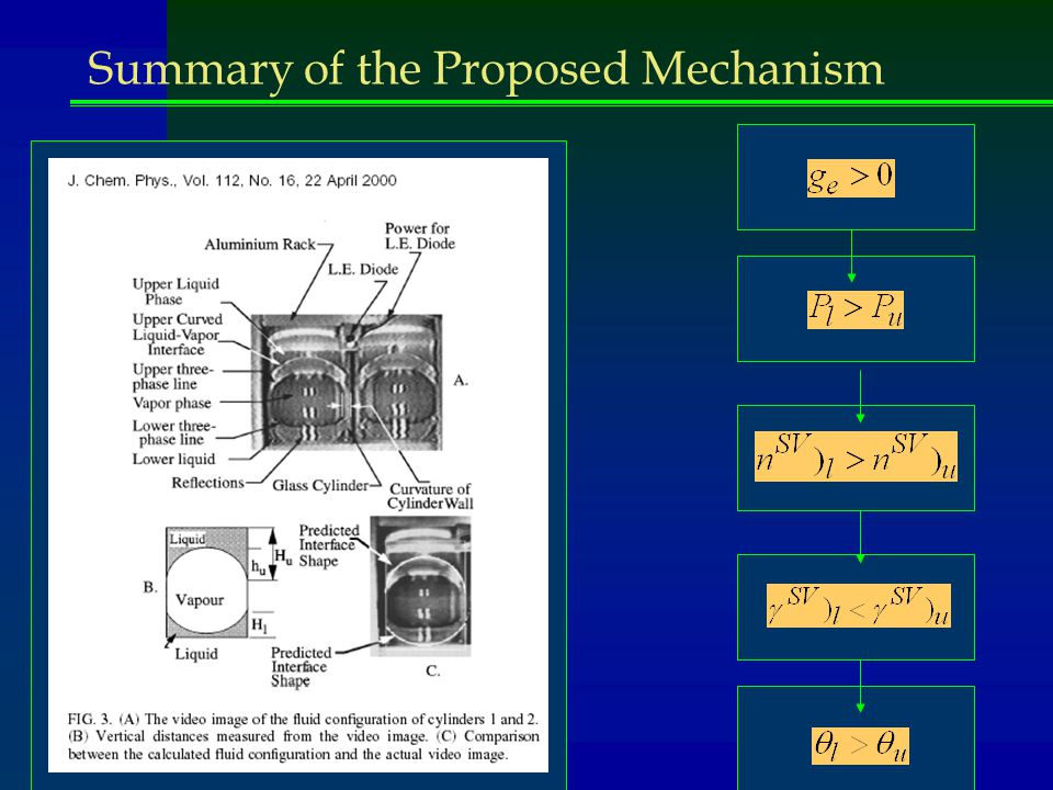 Summary of the Proposed Mechanism