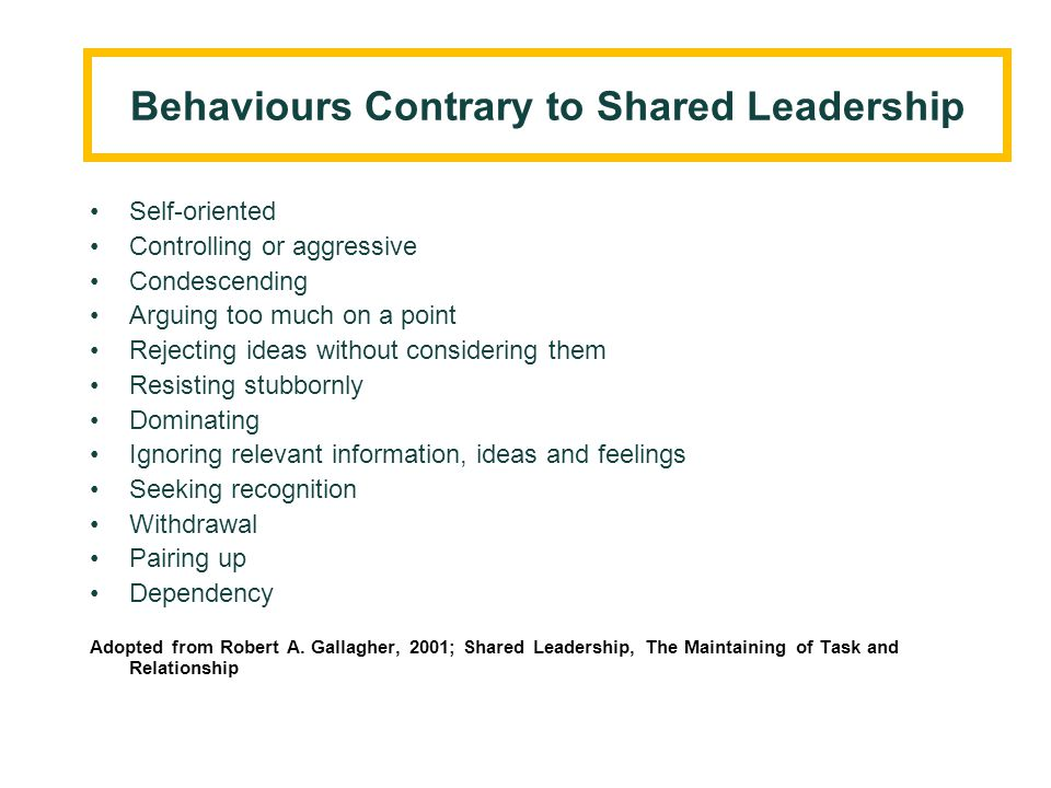 What is Shared Leadership.