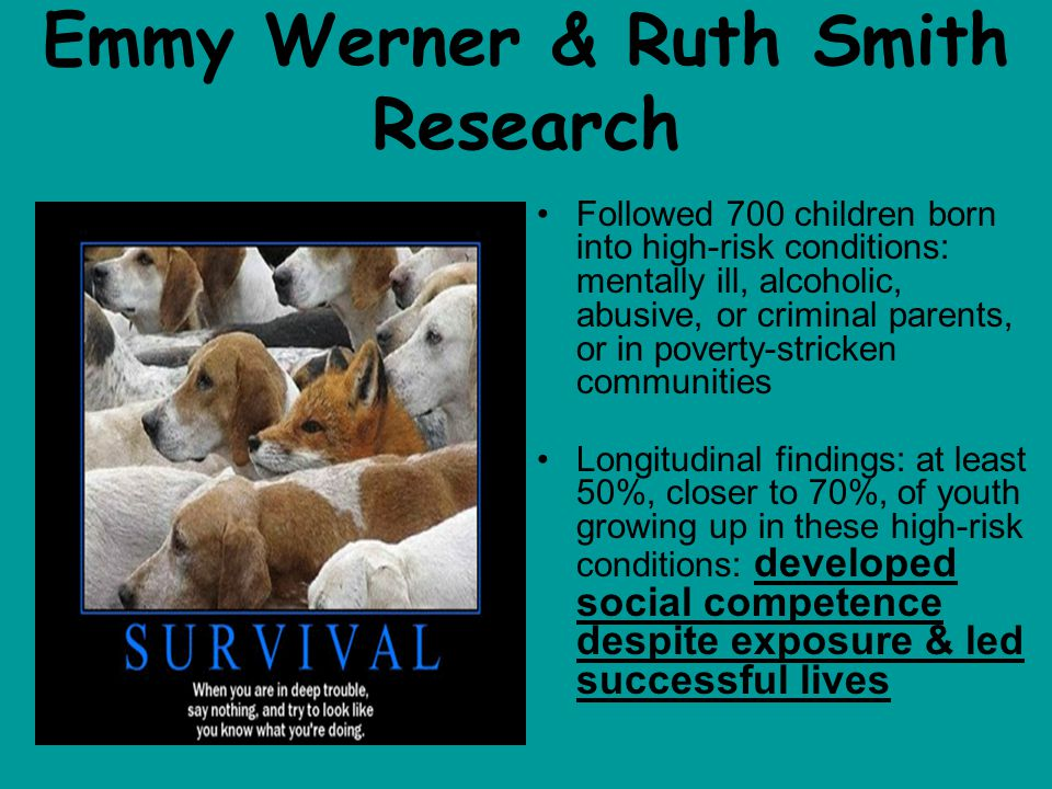 Emmy Werner & Ruth Smith Research Followed 700 children born into high-risk conditions: mentally ill, alcoholic, abusive, or criminal parents, or in poverty-stricken communities Longitudinal findings: at least 50%, closer to 70%, of youth growing up in these high-risk conditions: developed social competence despite exposure & led successful lives