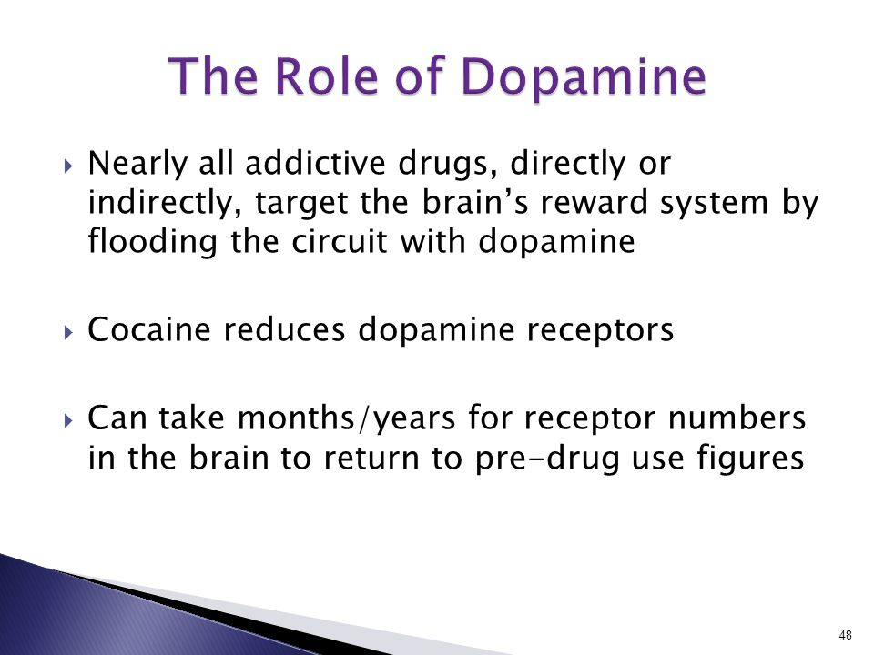  Nearly all addictive drugs, directly or indirectly, target the brain's reward system by flooding the circuit with dopamine  Cocaine reduces dopamine receptors  Can take months/years for receptor numbers in the brain to return to pre-drug use figures 48
