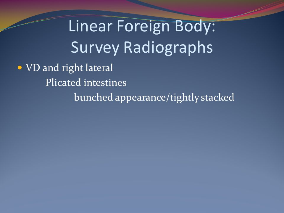 Linear Foreign Body: Survey Radiographs VD and right lateral Plicated intestines bunched appearance/tightly stacked