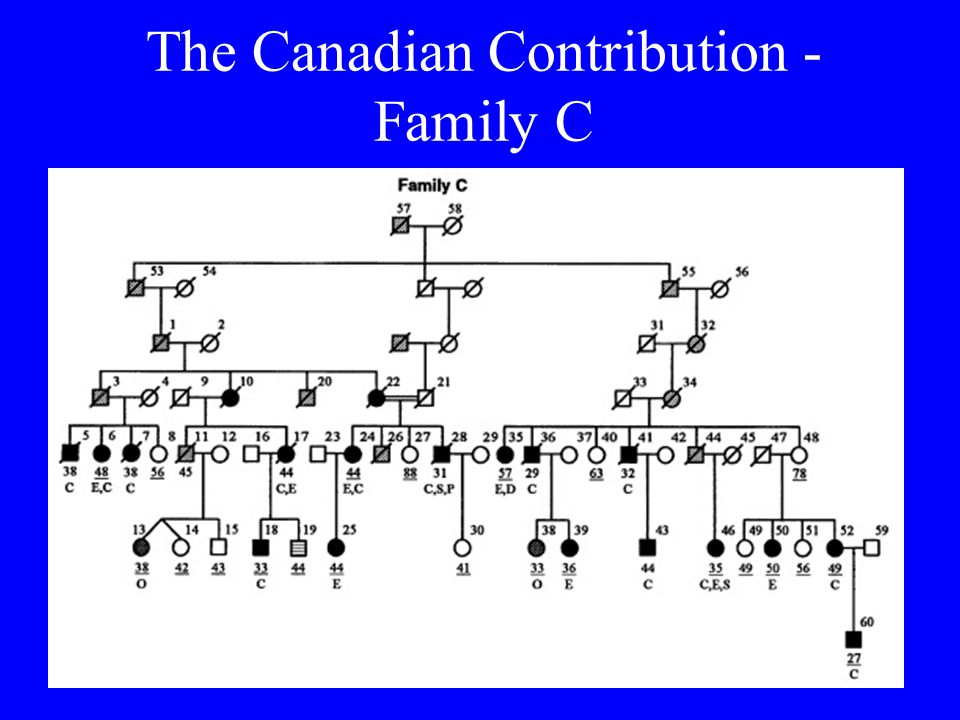 The Canadian Contribution - Family C