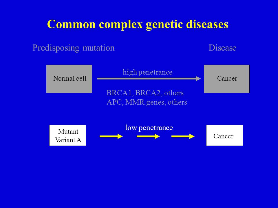 Predisposing mutationDisease Common complex genetic diseases Normal cell Cancer high penetrance BRCA1, BRCA2, others APC, MMR genes, others Mutant Variant A Cancer low penetrance