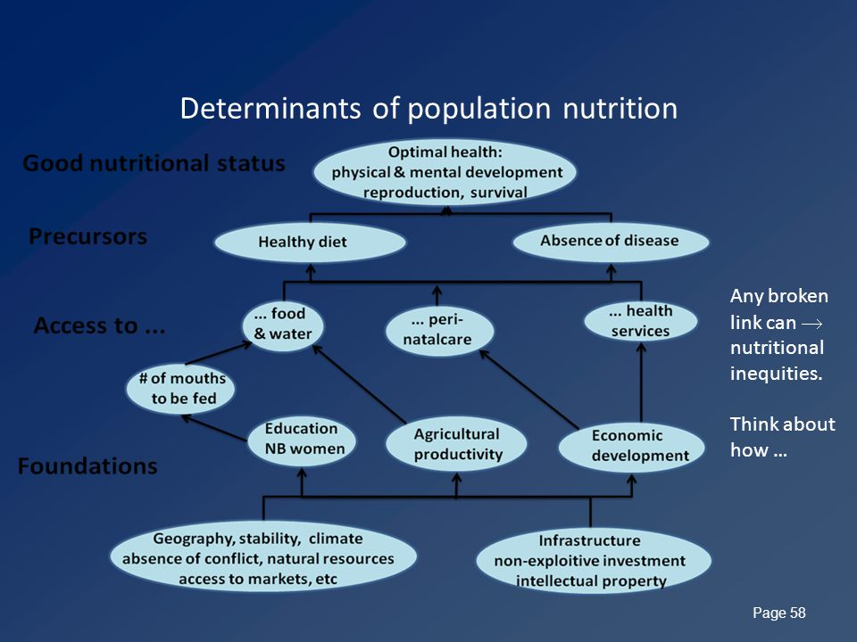 Determinants of population nutrition Page 58 Any broken link can  nutritional inequities.