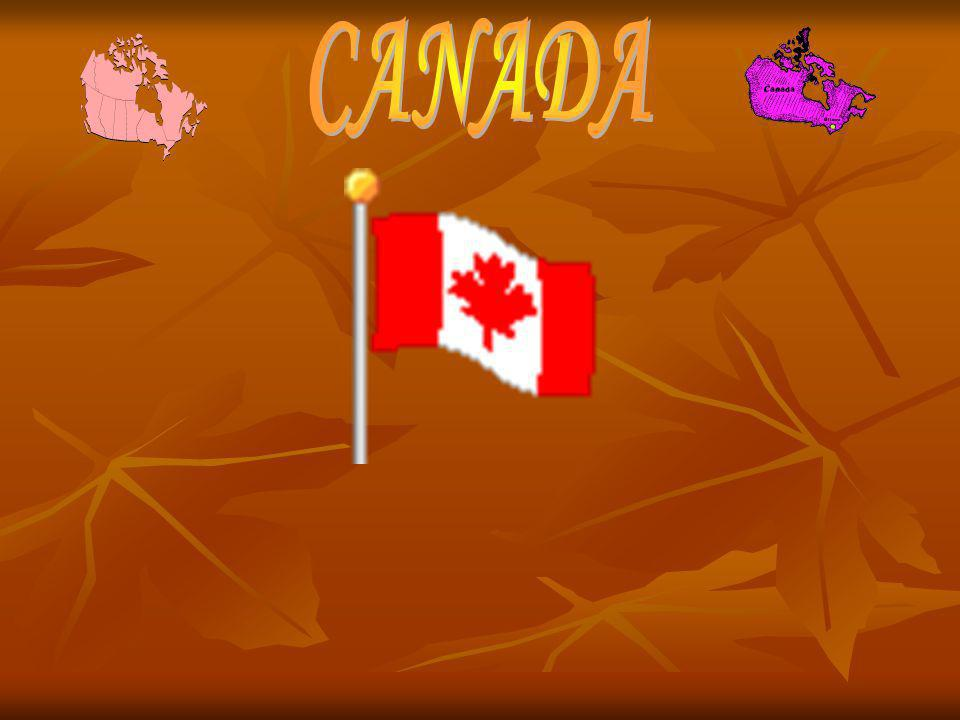 Freedom in Canada Many people all over the world come to Canada because it is the best and we respect other cultures and religions.