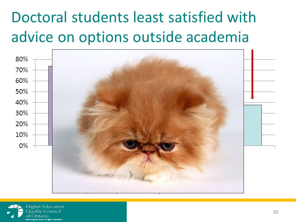 Doctoral students least satisfied with advice on options outside academia 20 Informing the Future of Higher Education