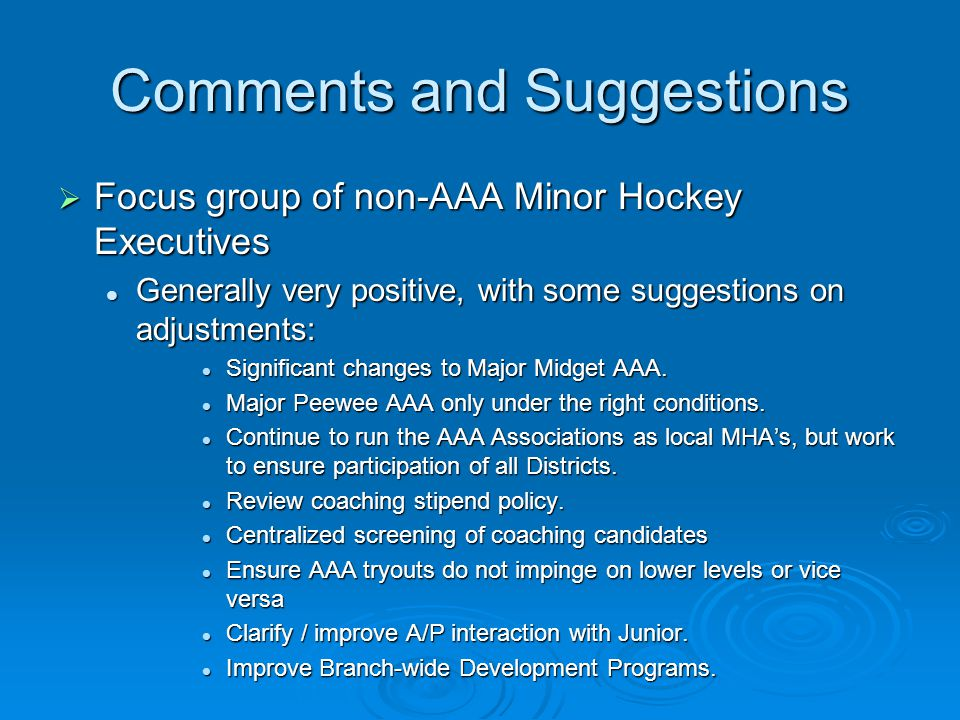 Comments and Suggestions  Focus group of non-AAA Minor Hockey Executives Generally very positive, with some suggestions on adjustments: Generally ver