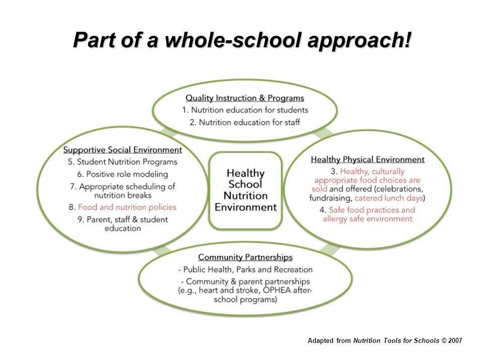 More Resources NUTRITION TOOLS FOR SCHOOLS©  Program consisting of a toolkit and public health support  Comprehensive approach to healthy eating (aligns with Foundations for a Healthy School Framework)  Will help schools meet P/PM 150 and go above and beyond to create a healthy school nutrition environment  Contact your public health unit!