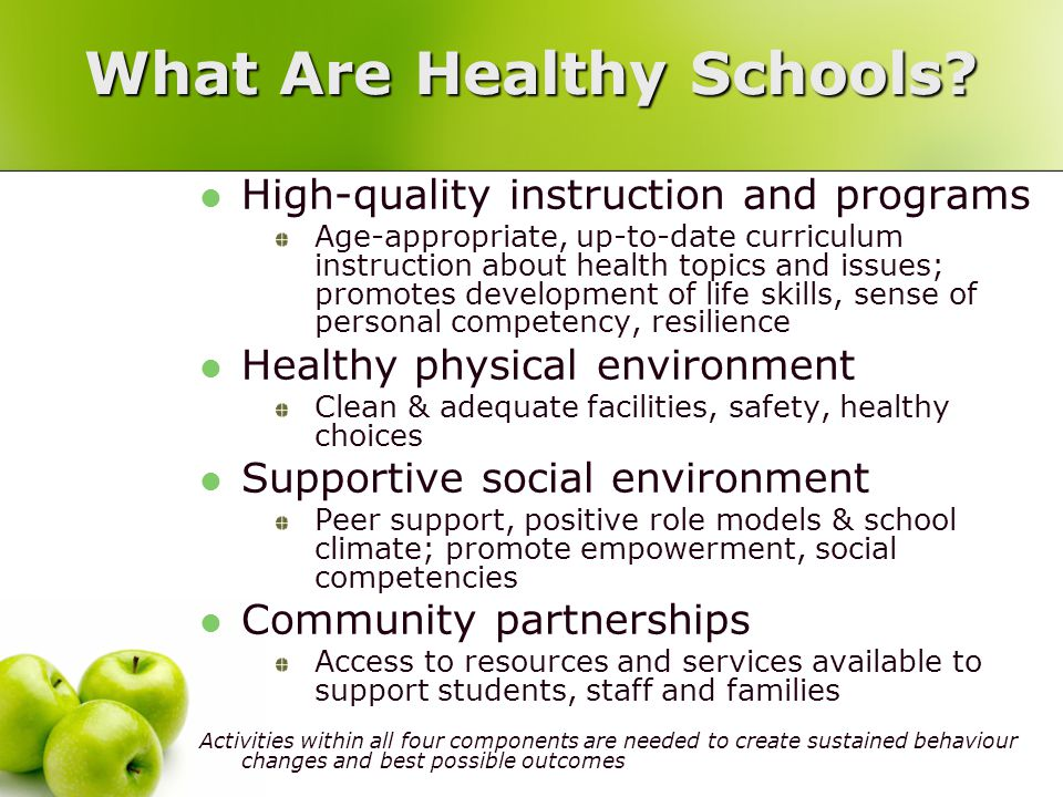 What Are Healthy Schools.