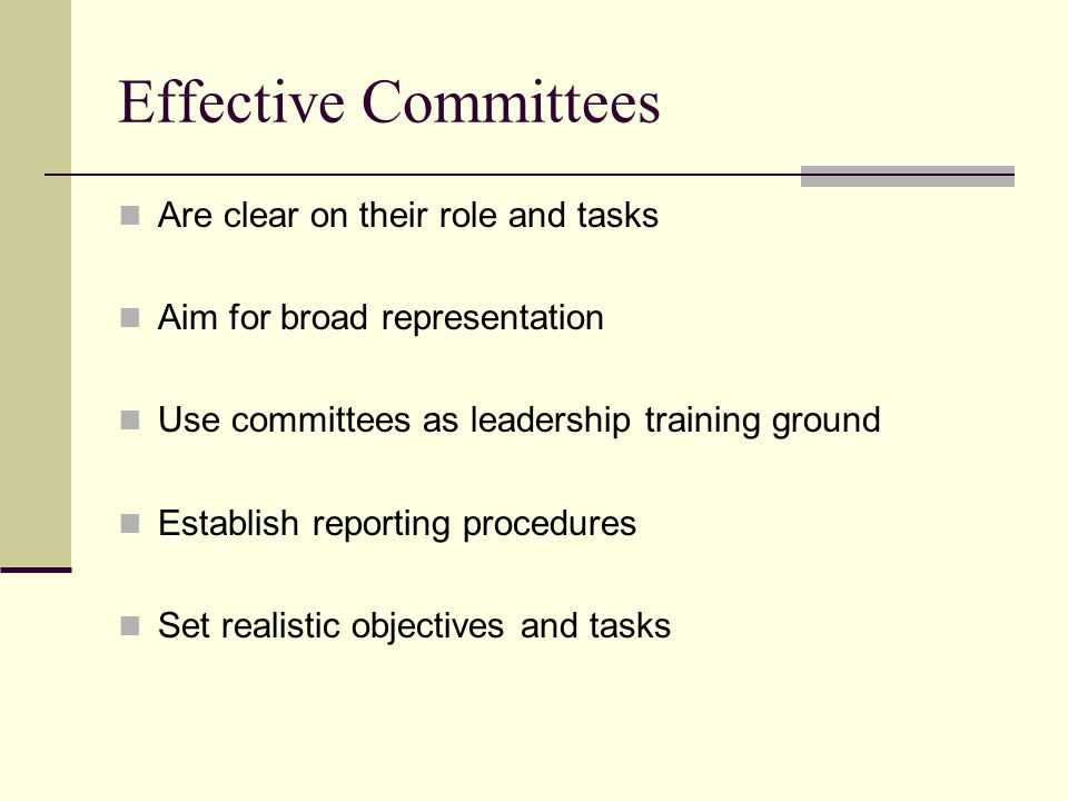 Effective Committees Are clear on their role and tasks Aim for broad representation Use committees as leadership training ground Establish reporting procedures Set realistic objectives and tasks