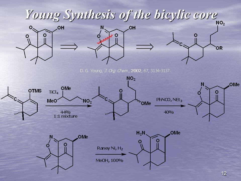 12 Young Synthesis of the bicylic core