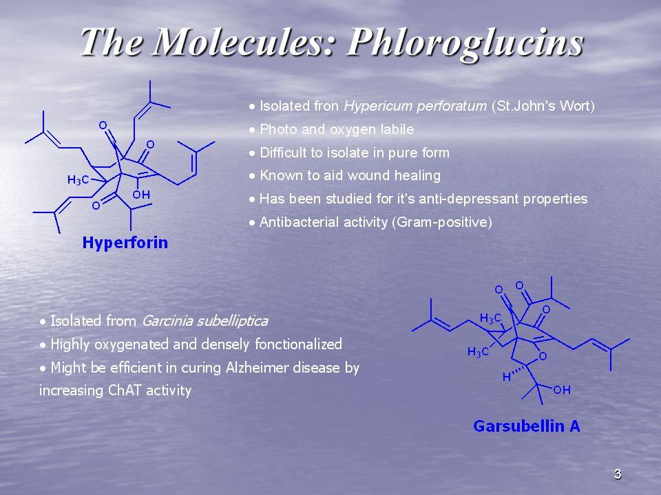 3 The Molecules: Phloroglucins
