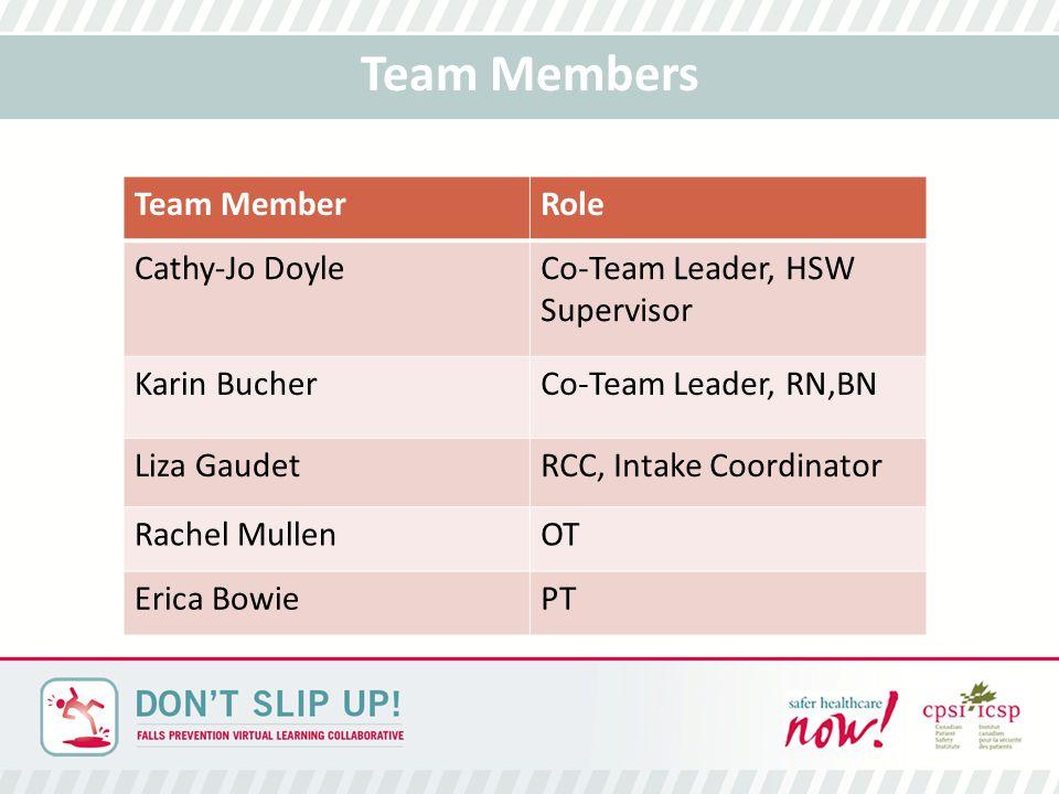 Team Members Team MemberRole Cathy-Jo DoyleCo-Team Leader, HSW Supervisor Karin BucherCo-Team Leader, RN,BN Liza GaudetRCC, Intake Coordinator Rachel MullenOT Erica BowiePT