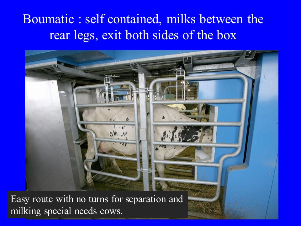 Boumatic : self contained, milks between the rear legs, exit both sides of the box Easy route with no turns for separation and milking special needs c