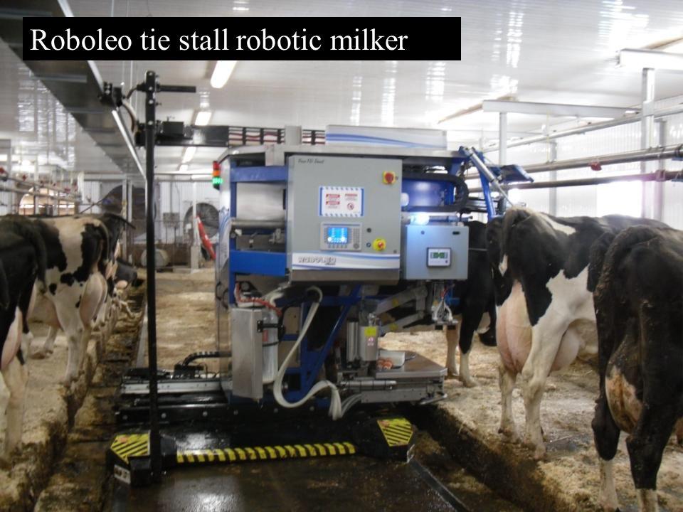 Roboleo tie stall robotic milker