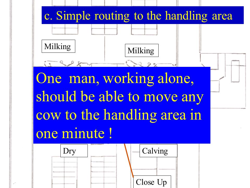 c. Simple routing to the handling area Milking Dry Close Up Calving Milking Fresh and Lame One man, working alone, should be able to move any cow to t