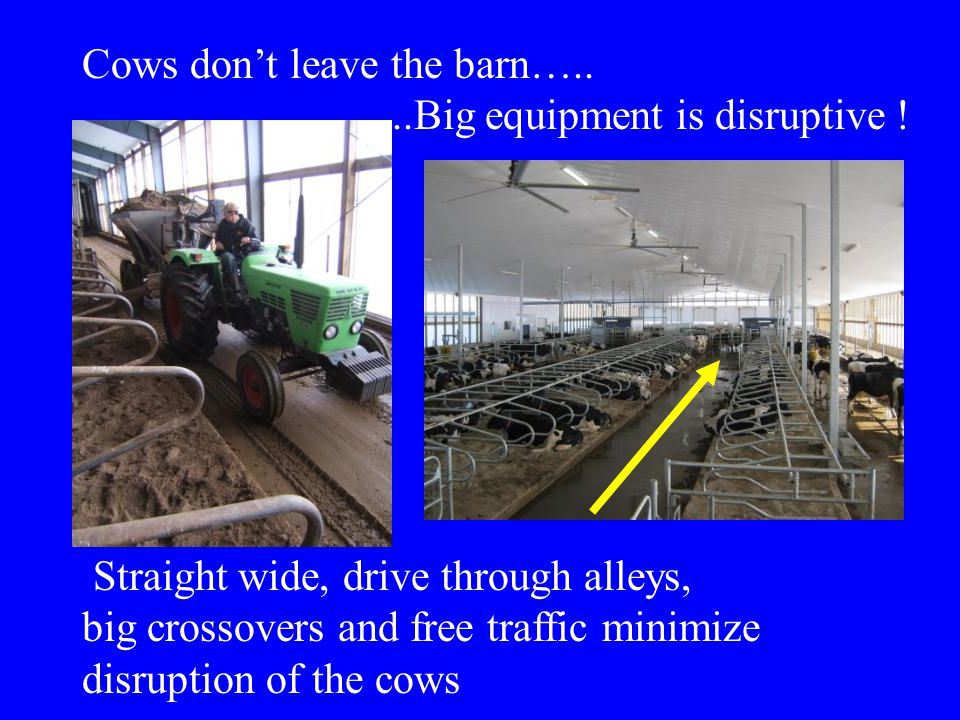 Cows don't leave the barn…......Big equipment is disruptive ! Straight wide, drive through alleys, big crossovers and free traffic minimize disruption