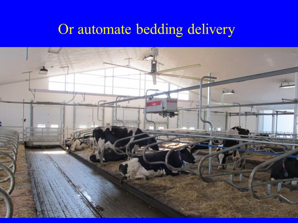 Or automate bedding delivery