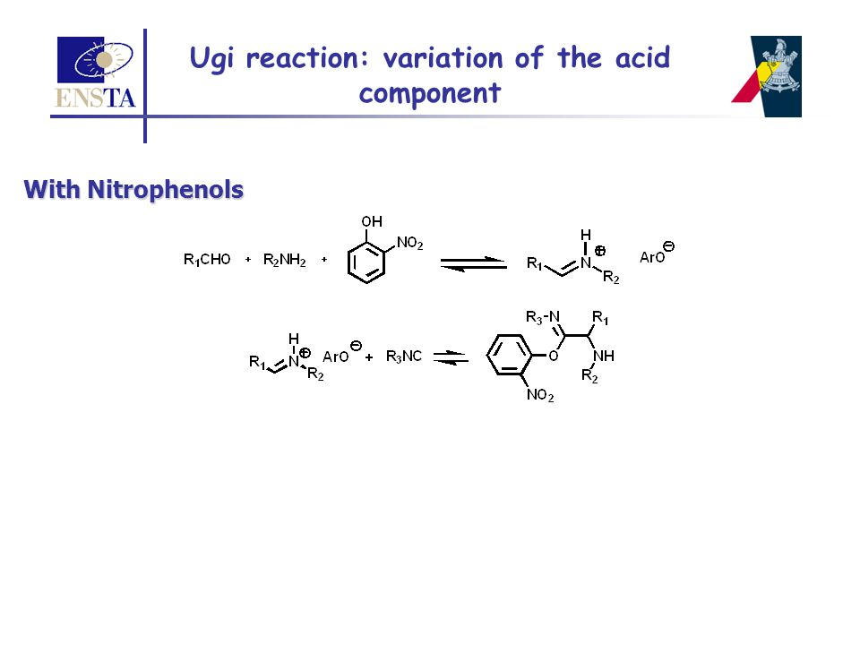 + Post-condensations 4-CR + Muticomponent reactions