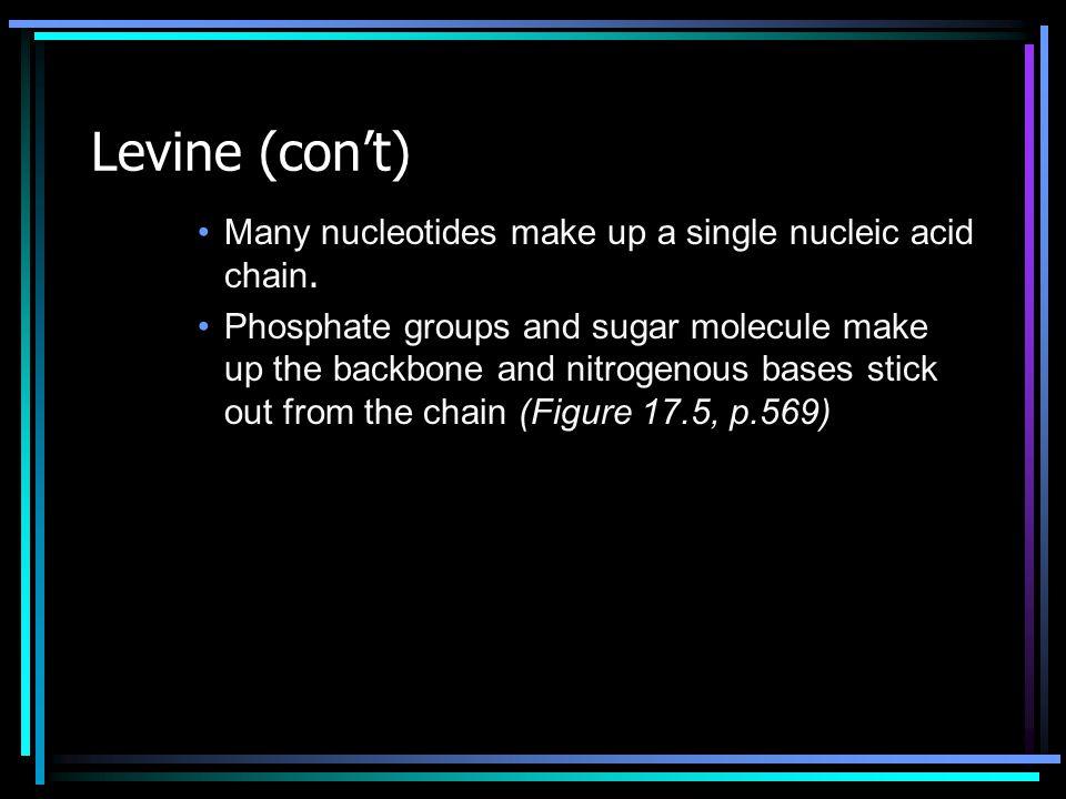 mRNA Codons