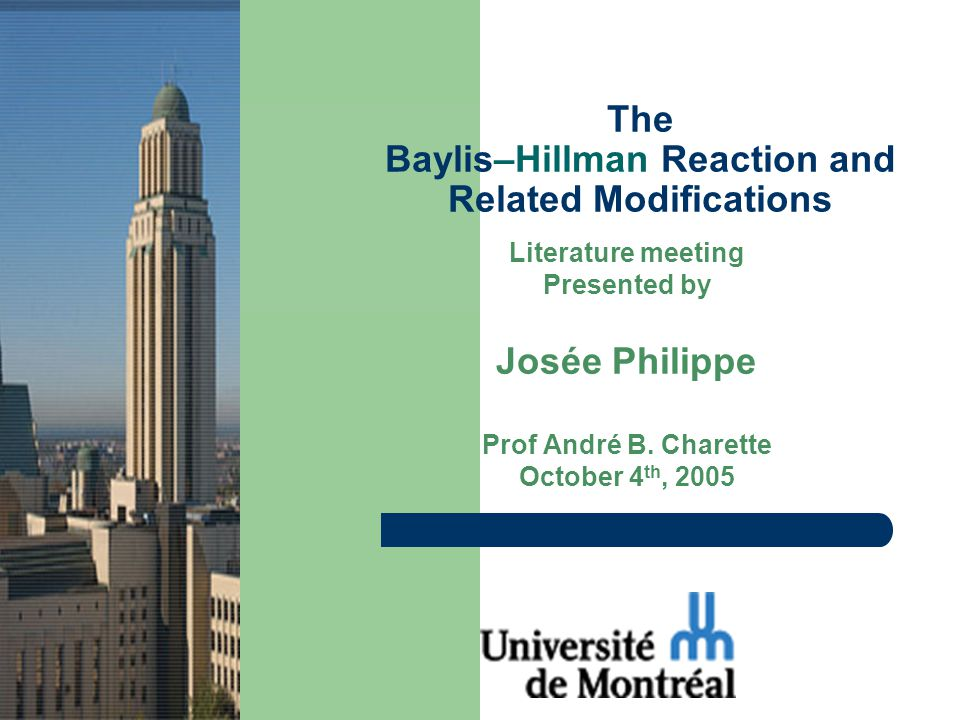 Literature meeting Presented by Josée Philippe Prof André B.