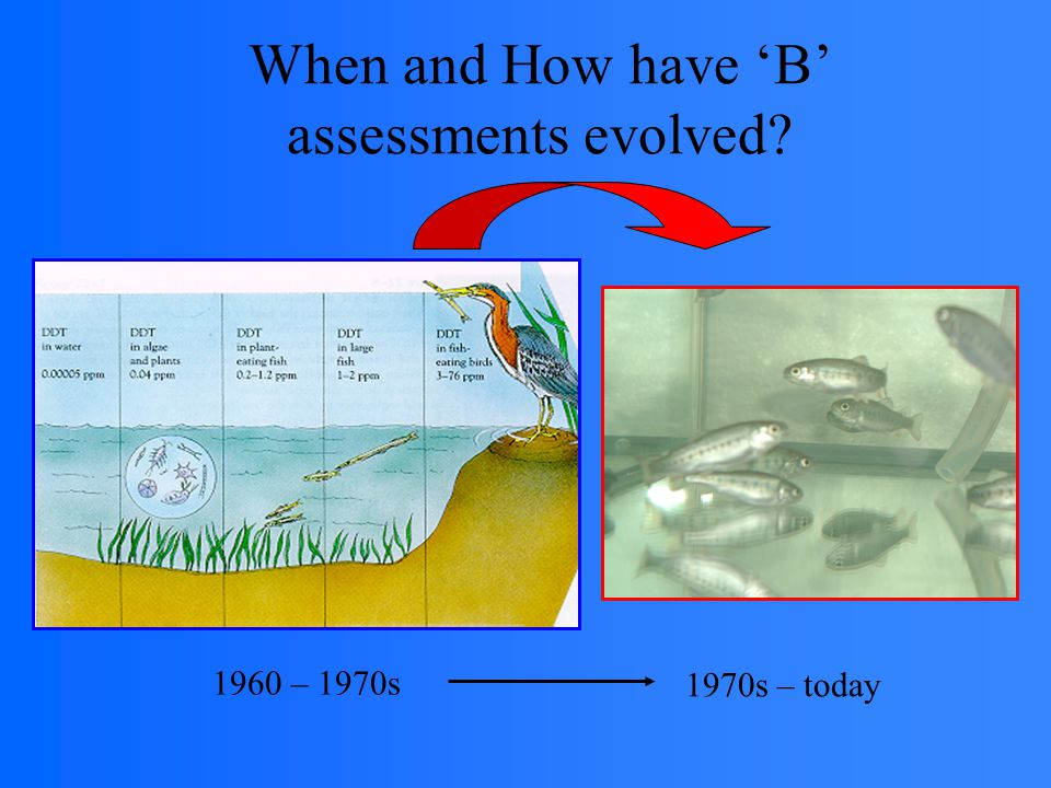 When and How have 'B' assessments evolved 1960 – 1970s 1970s – today