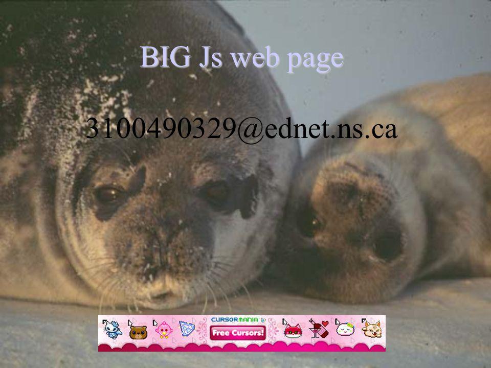 BIG Js web page BIG Js web page 3100490329@ednet.ns.ca
