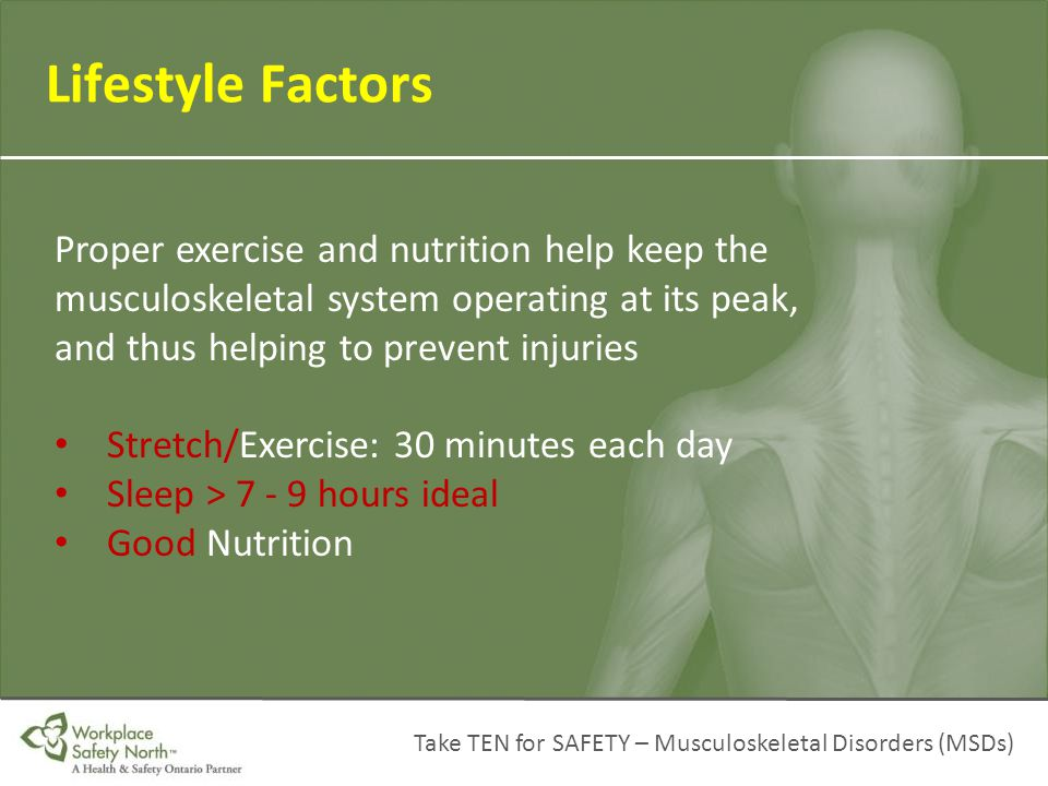Take TEN for SAFETY – Musculoskeletal Disorders (MSDs) Lifestyle Factors Proper exercise and nutrition help keep the musculoskeletal system operating
