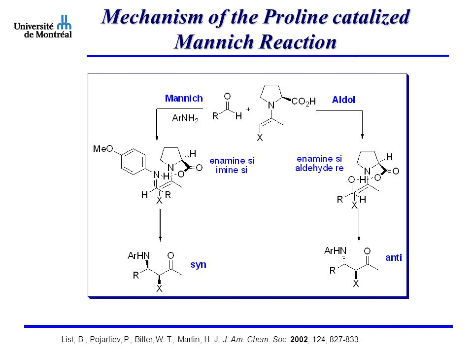 Mechanism of the Proline catalized Mannich Reaction List, B.; Pojarliev, P.; Biller, W.