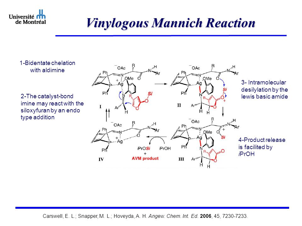 Vinylogous Mannich Reaction Carswell, E. L.; Snapper, M.