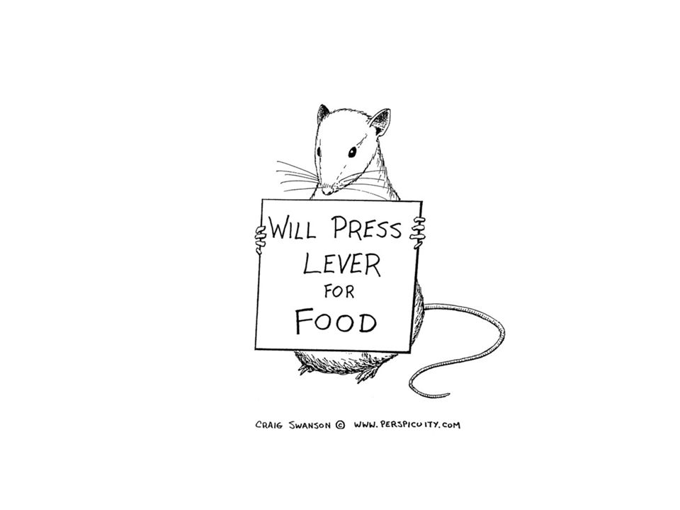 Determining When we eat: Pavlovian Conditioning of hunger Hunger is caused by expectation of food, not deficit.