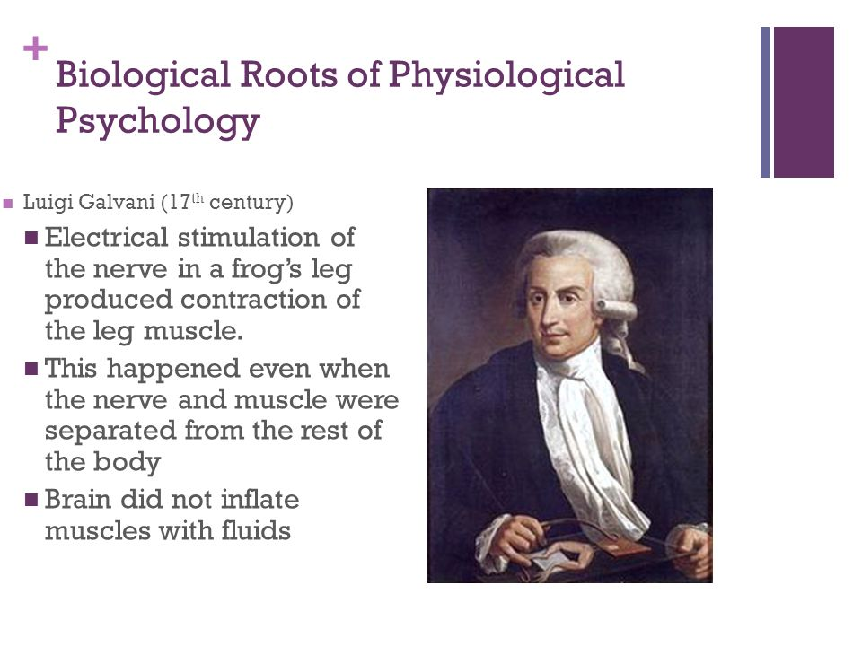 + Biological Roots of Physiological Psychology Luigi Galvani (17 th century) Electrical stimulation of the nerve in a frog's leg produced contraction of the leg muscle.