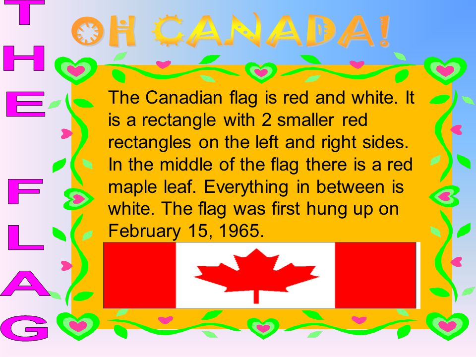 The Canadian flag is red and white. It is a rectangle with 2 smaller red rectangles on the left and right sides. In the middle of the flag there is a