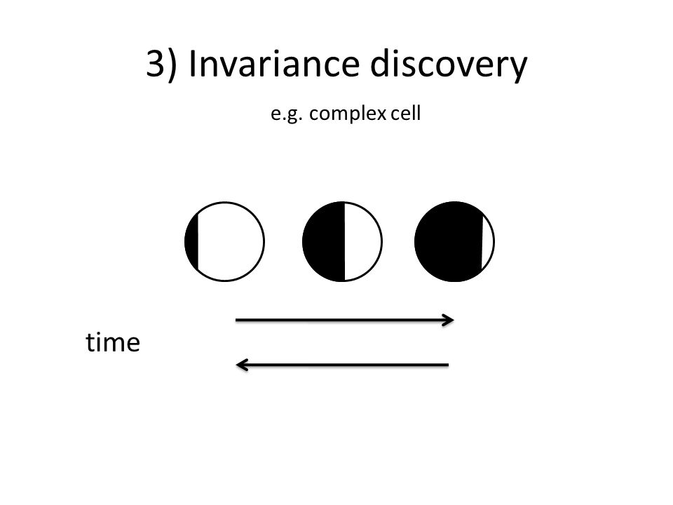 3) Invariance discovery time e.g. complex cell