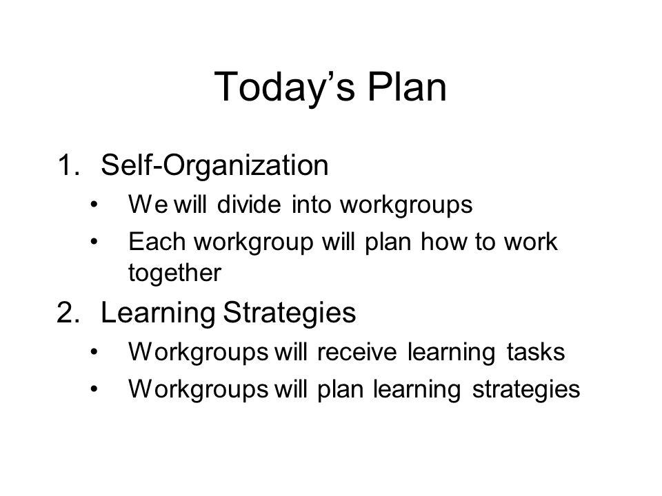 Today's Plan 1.Self-Organization We will divide into workgroups Each workgroup will plan how to work together 2.Learning Strategies Workgroups will receive learning tasks Workgroups will plan learning strategies