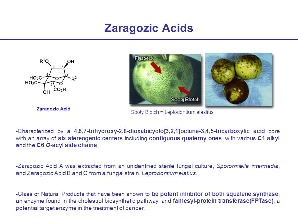 Zaragozic Acids -Characterized by a 4,6,7-trihydroxy-2,8-dioxabicyclo[3,2,1]octane-3,4,5-tricarboxylic acid core with an array of six stereogenic centers including contiguous quaterny ones, with various C1 alkyl and the C6 O-acyl side chains.