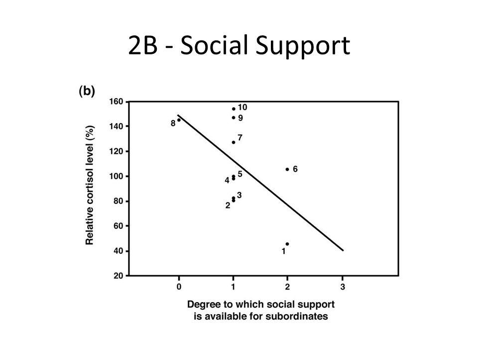 2B - Social Support