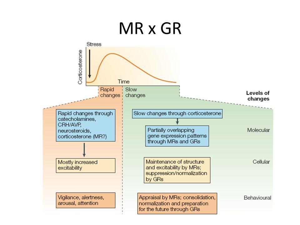 MR x GR
