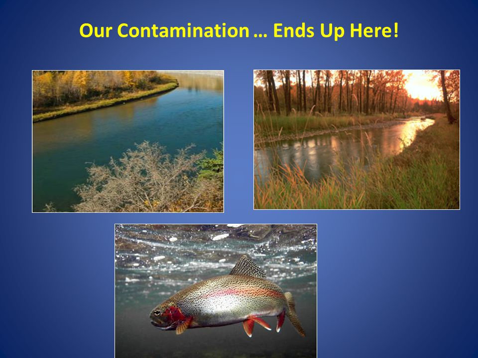 Our Contamination … Ends Up Here!