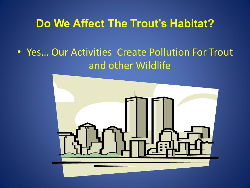 Do We Affect The Trout's Habitat? Yes… Our Activities Create Pollution For Trout and other Wildlife