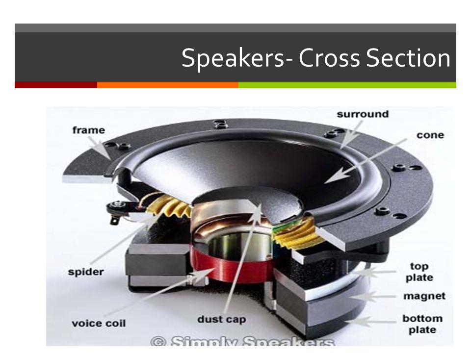 Speakers- Cross Section
