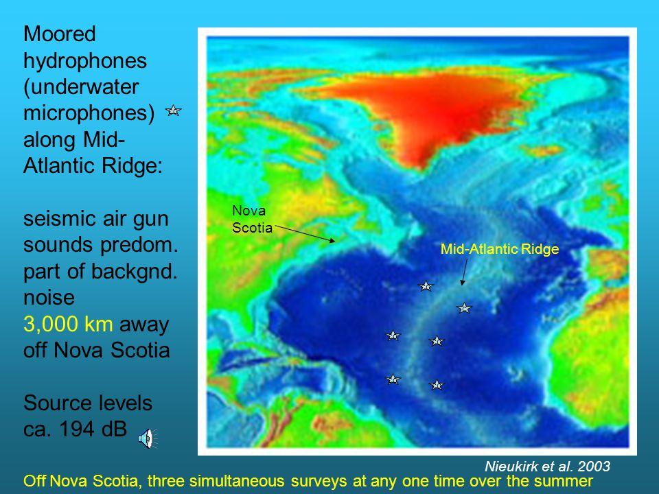 Moored hydrophones (underwater microphones) along Mid- Atlantic Ridge: seismic air gun sounds predom.