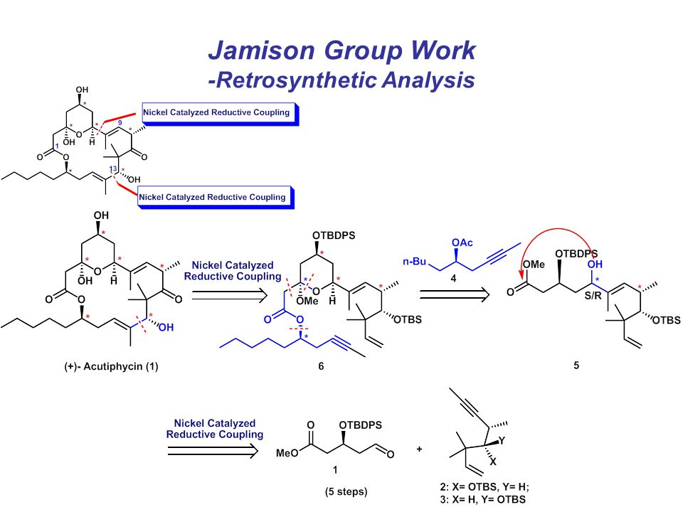 Jamison Group Work -Retrosynthetic Analysis