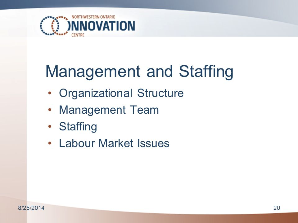 8/25/201420 Management and Staffing Organizational Structure Management Team Staffing Labour Market Issues