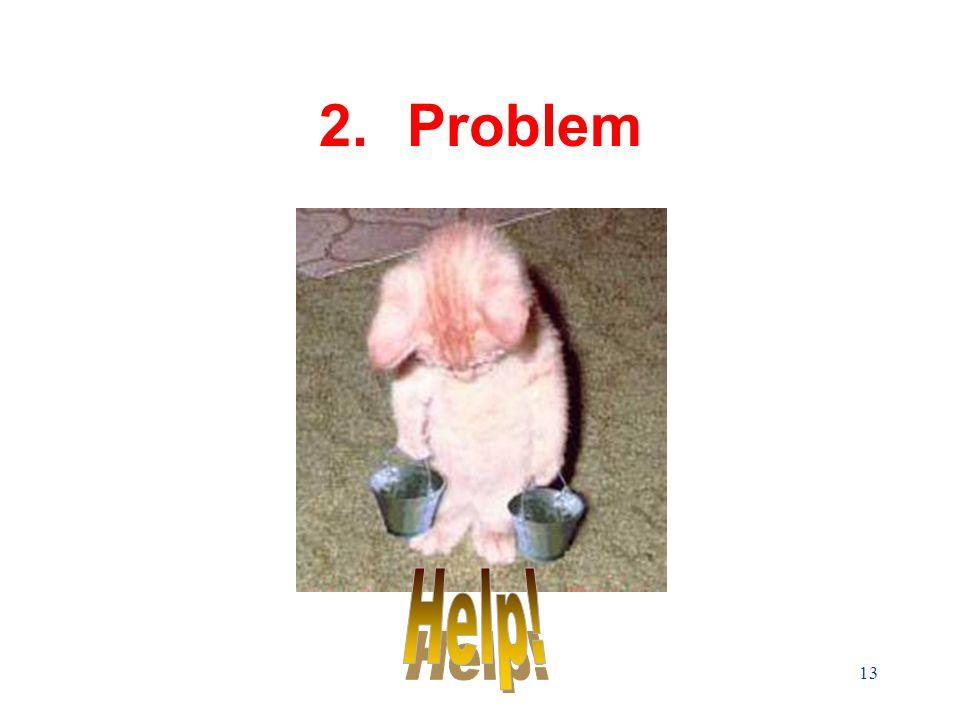 13 2.Problem