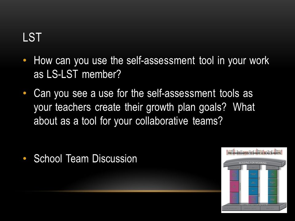 LST How can you use the self-assessment tool in your work as LS-LST member.